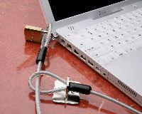 Chaperone® Laptop Security Cable
